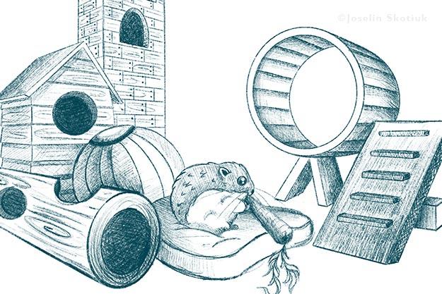 sterling-hamster-character-design-sketch
